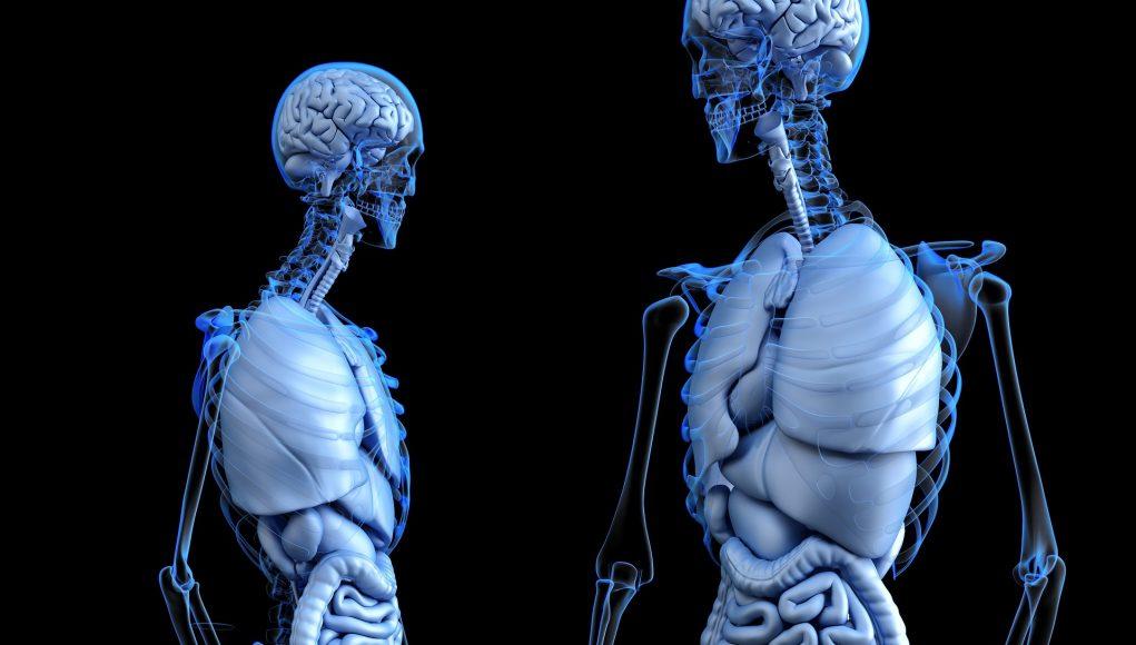 necesitatea unei ecografii abdominale